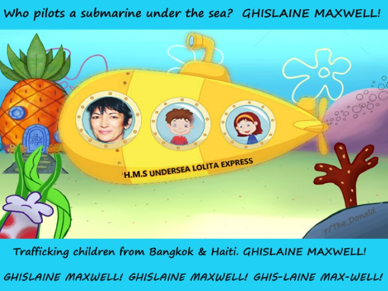 EM0zALDXkAAS2q0 - _Sather_ Ghilsaine MaxwellEpsteins GHISLAINE MAXWELL has a Submersible CraftSubmarine Pilots License, as well as a HELICOPTERSmall Plane Pilots License. She had a Non PROFIT organization TerraMar re Oceanic StudyEDUCATION